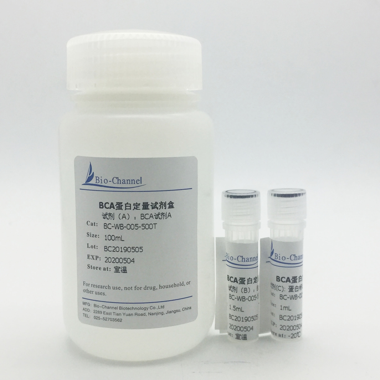 BCA蛋白定量试剂盒 BC-WB-005-500T