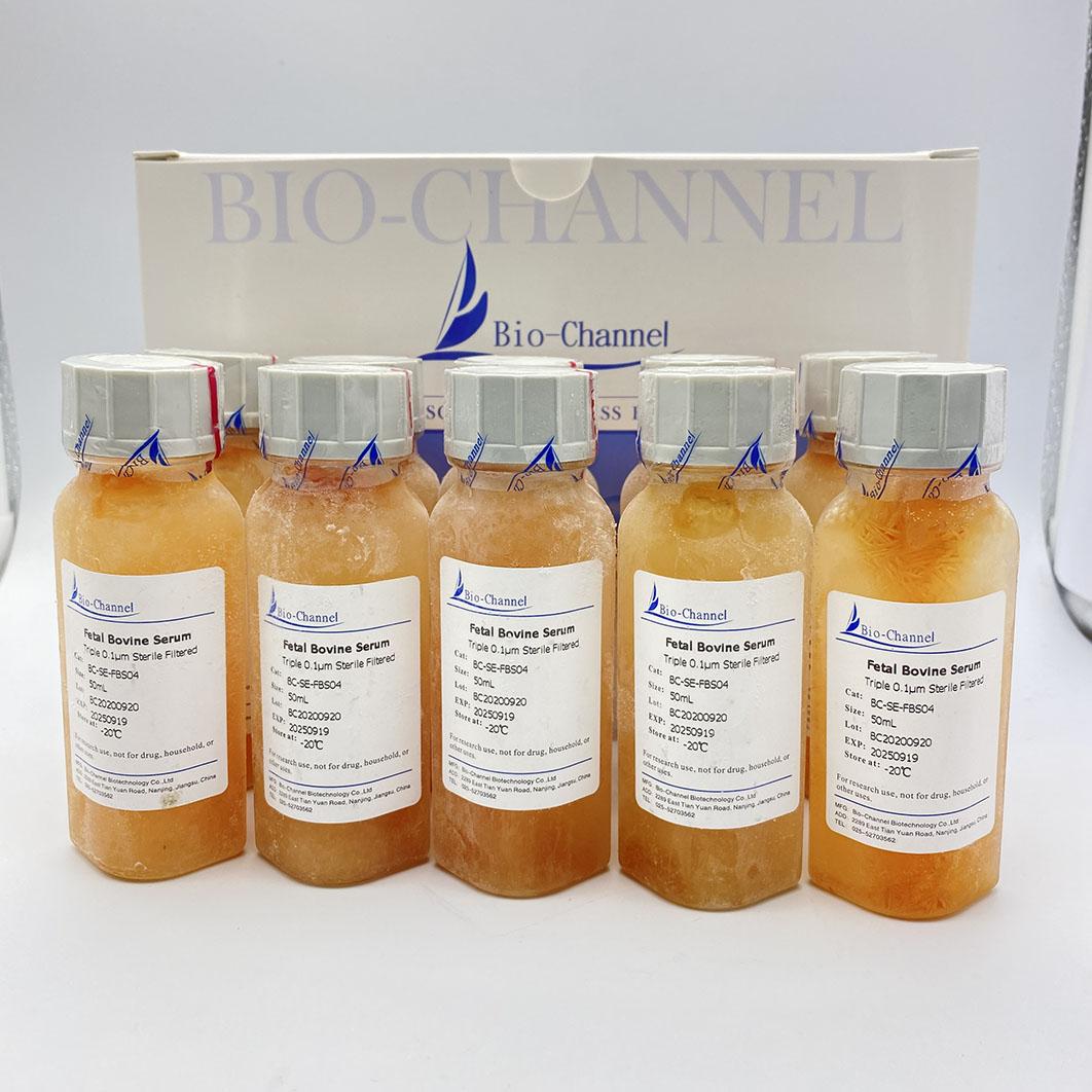 胎牛血清 (FBS) BC-SE-FBS04C