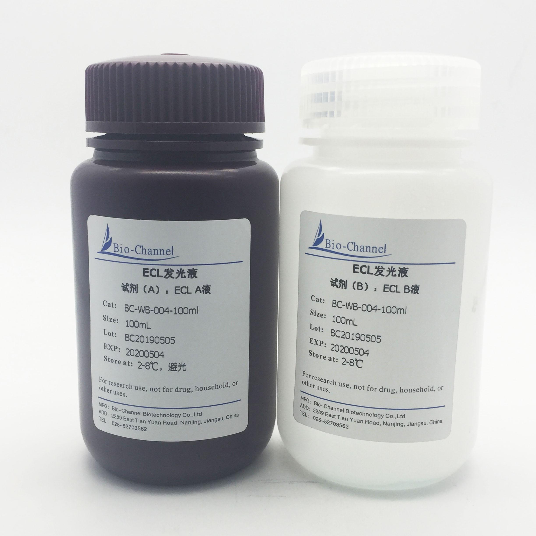 ECL发光液 BC-WB-004-100ml