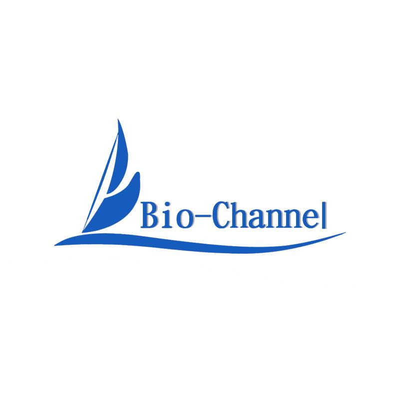 天狼星红染色试剂盒(结缔组织)BC-DL-165-250mL